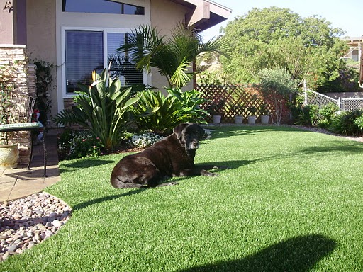 Shadows-New-Artificial-Turf